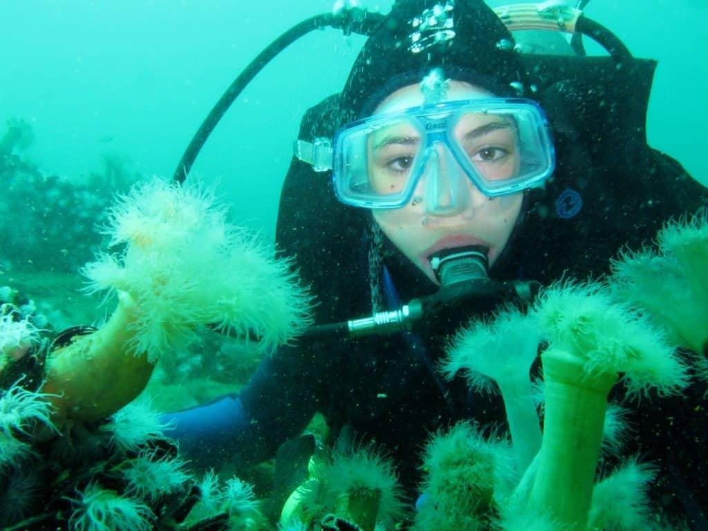 argentina scuba diving
