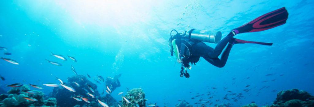 Drake Island dive. Courtesy of Civitatis.