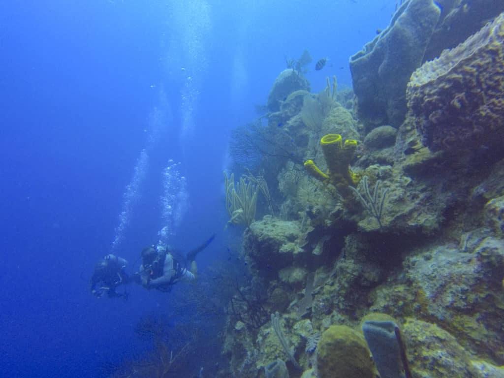 Diving in Half Moon Caye Wall in Belize.