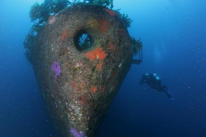 Scuba Diving in New Zealand: the Wrecks of Waikato and Rainbow Warrior