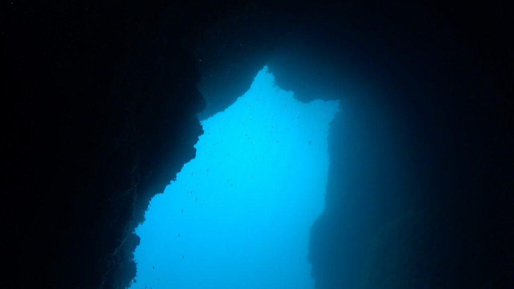 St. Andrews Divers Cove