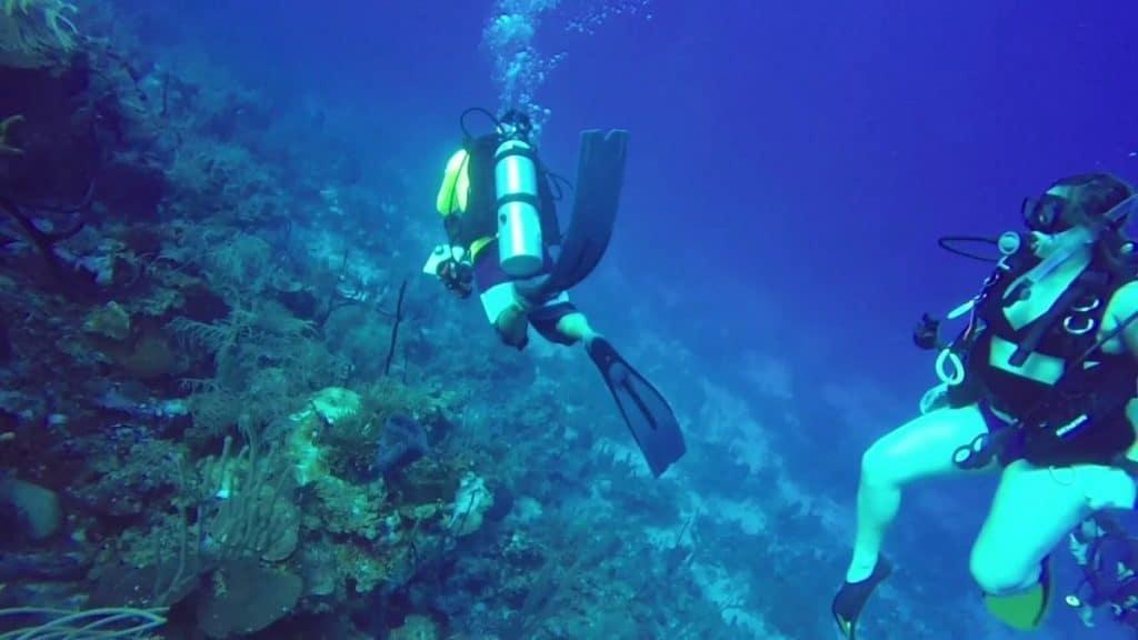 Rendezvous Cut - Belize Scuba Diving