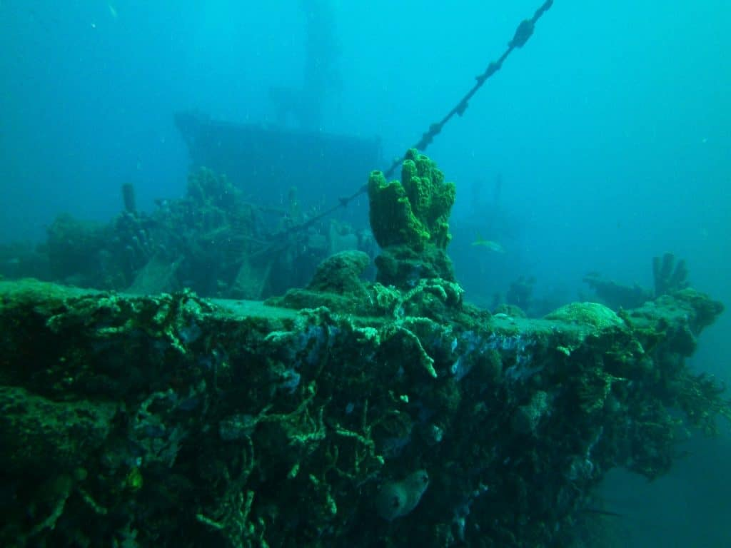 Le Franjack (The Franjack) is a 50 meter (164 feet) long sand transporter that was purposely sunk to become an artificial reef.