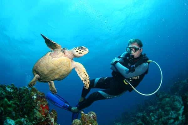 Scuba diving La Piscine (The Pool): a shallow dive site that can be enjoyed by newbie divers