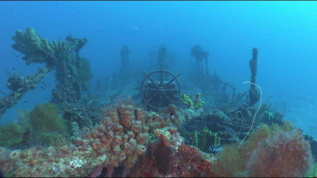 Diving the Formerly named Quinette de Richemond, the Nahoon wreck.